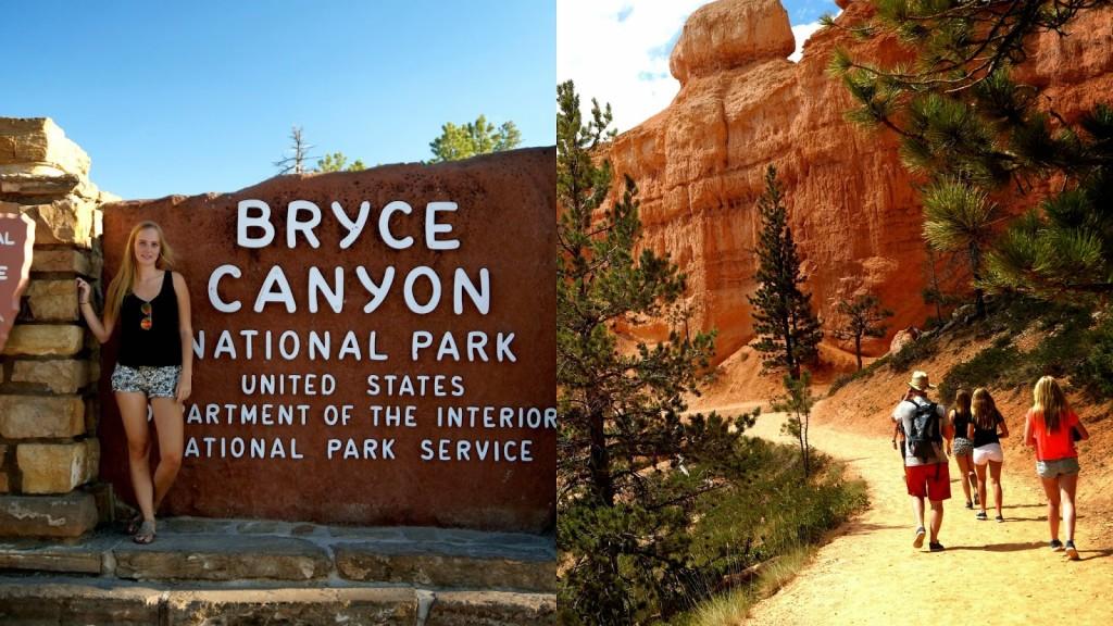 Bryce-1024x576